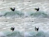 SARAHG SURF PHOTOGRAPHY's avatar