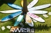 Swell Surf Camp's avatar